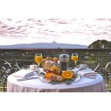 Fairmont Hotels & Resorts > KEN Mount Kenya Safari Club > Balcony Breakfast