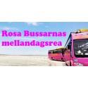 Rosa Bussarnas mellandagsrea!