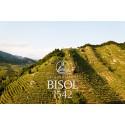 Bisol väljer Lively Wines!