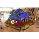 Coming Home to SG50 with Changi Airport