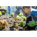 Pressinbjudan: Välkommen till Barnens rabatt i Stadsparken