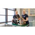 Uusi 24/7 päivystävä eläinsairaala avataan Tampereelle