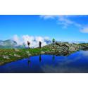Alperna på sommaren slår nya rekord – igen