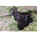 Ny HaV-rapport: Flera av Sveriges naturliga grundvattenkällor skadade
