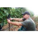 Högberga Vinfabrik utbildar framtidens vinmakare - Startar exklusiv utbildning tillsammans med Vinkällan