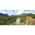 Premiär för Rosa Bussarnas vandringsresa till Kebnekaise