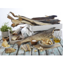 Nok et rekordår for hvitfisk