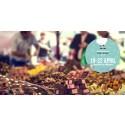 Förra årets succé åter - internationella matmarknaden 19-22 april