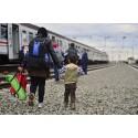Internflyktingar och möjligheten att återvända