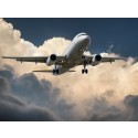 Bara hälften av kommunerna styr mot minskat flygresande och klimatkompenserar utsläpp