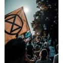 Klimatrörelse får Martin Luther King-priset 2020