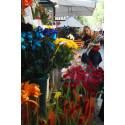 Barcelona bugner af roser, bøger og kærlighed den 23. april, Catalonien