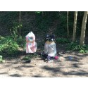 Health risks force council to unseal dog waste bins