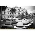Låten Panama är en sensommarplåga