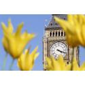 Brexit fører til økt etterspørsel på reiser til Storbritannia