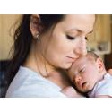 Babyns hud - port för matallergen
