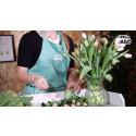 Tips för en hållbar tulpanbukett