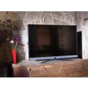 Ny och allsidig Loewe bild 5 TV