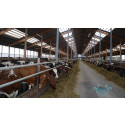 Webinar: Data Driven Dairy Decisions for Farmers – 4D4F