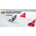 Landslagsåkare ny förbundskapten för Alpina paralandslaget