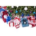 Afsløring: Det ligger der under juletræet i år