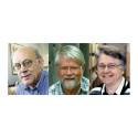 Högre särskilt stipendium till Anna och Per Borghs minne 2016 tilldelas tre svenska professorer