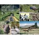 Nyhet!  Økologisk og miljøsmart pouch fra Emiliana Organic Vineyards, Chile.