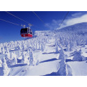 It's all about SNOW!  Come and see Japan's magical winter sceneries