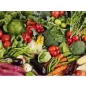 Pressinbjudan: Kommunala skolor i Karlstad först i landet med planetsäkra måltider