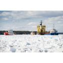 Isen ska minskas i Luleå hamn