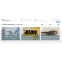Nu kan du bestille skadedyrsbekæmpelse online