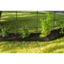 Planteringskant svart miljöbild