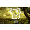 Tolv Skånska företag i nätverk för att minska sitt energianvändande