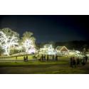 Nu tändas hundratusen juleljus i Skånes Djurpark