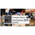 Digitalbyrån Fröjd – utsedd till en av Sveriges bästa arbetsplatser 2016 av Great Place To Work