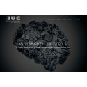 IUC Z-GROUP lanserar ny Websida