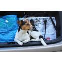 Populær hundepasning udvider forsikringsdækningen
