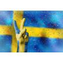Svenskarna fotbollstokigast i Europa