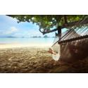 Lægens råd om jetlag:  Nyd din ferie, fra det øjeblik du lander