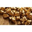 Guldläge för Ramböll och Botnia Exploration
