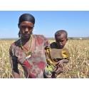 Tiotusentals barn i Etiopien räddas från svält genom Plan Internationals humanitära insatser
