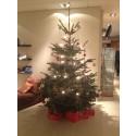 Julgran på Quality Hotel Winn Haninge söker klappar till välgörenhetsprojekt