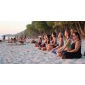 Så ser svenskarna på yogis och gymmare: Harmoniska och flummiga eller fåfänga och macho