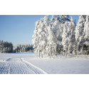 Massor av härlig snö i Orsa  – bästa säsongen börjar nu