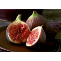 Global Fig Ingredient Market to Witness a Pronounce Growth During 2025