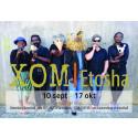 Visning av utställningen Xom Etosha - där 1800-talets Vänersborg möter 2000-talets Namibia.