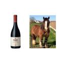 Ny årgång av Bourgogne Oka från Domaine Arlaud!