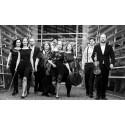 Vivaldissimo  – Camerata Øresund med solist Eline Soelmark på Palladium Malmö 10 feburari