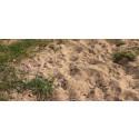 Vi återskapar värdefull natur på unika sandmarker