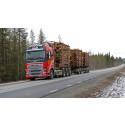 Ökade kostnader och intäkter i skogsbruket